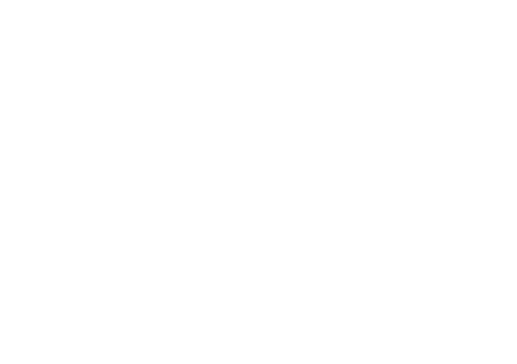 echda ebsa Logo weißer Eber